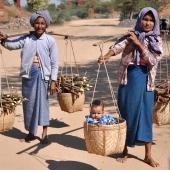 AlexisLoriot_Birmanie_3