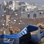 essaouira_photo-AlexisLoriot_15
