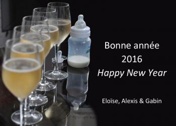 2016_Nouvel-an_AlexisLoriot