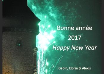 2017_Nouvel-an_AlexisLoriot