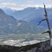 Vancouver-nature_alexisloriot_19